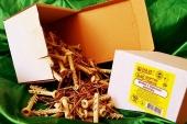 Дюбели WAVE 6х60 mm гриб с ударным шурупом  в картонной коробке  - ISO 9001